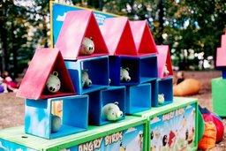 Атракціон  «Angry Birds»